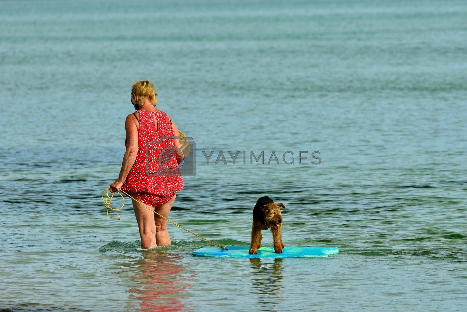 a woman giving her pet dog a ride on a surf board, at a sea beach