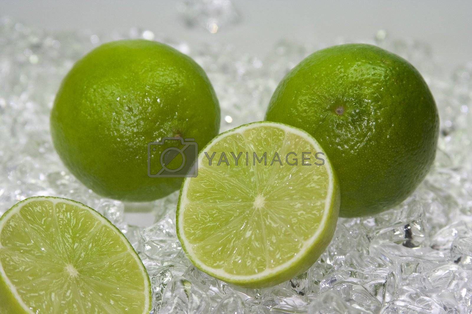 fresh lime on cold ice