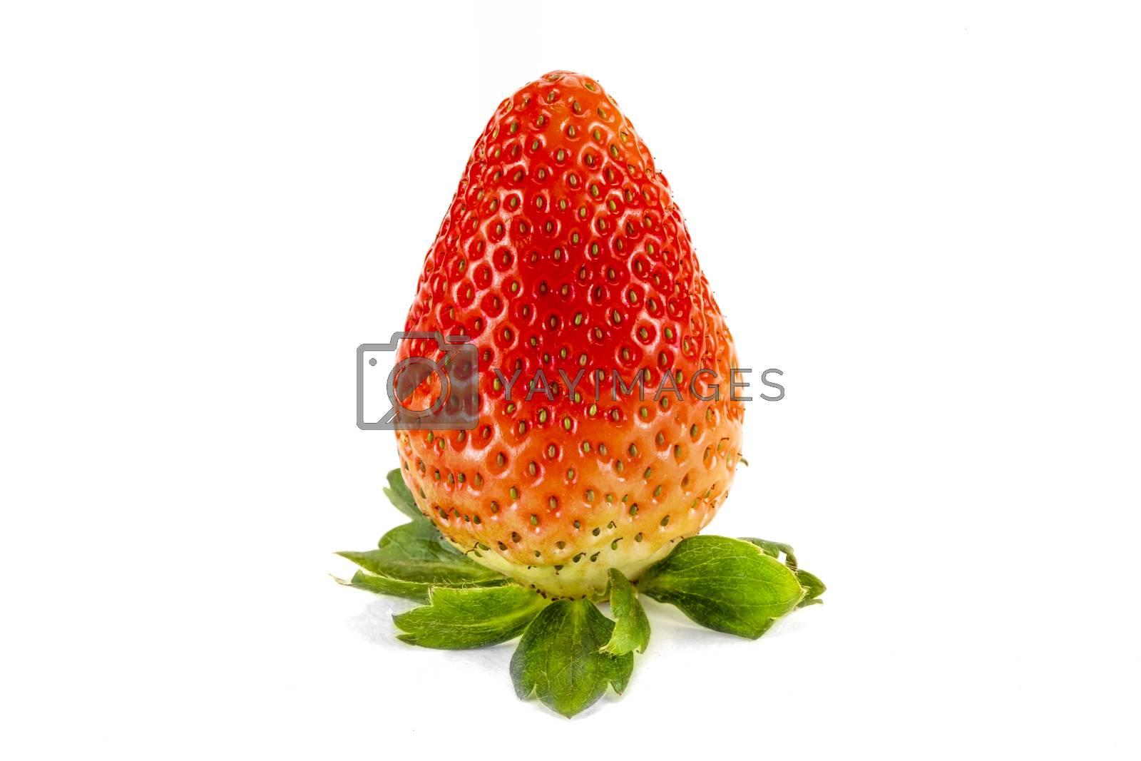 Fresh large red strawberry, isolated on white background