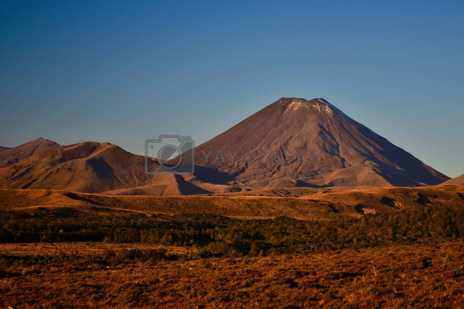 Ngauruhoe volcano; region of volcanic activity. Volcanic activity in the zone started about 2 million years ago and continues today. This is the largest and most active volcano of the Tongariro group. Traditionally Ngauruhoe has erupted at least every nine years, although the last eruption was in 1975.