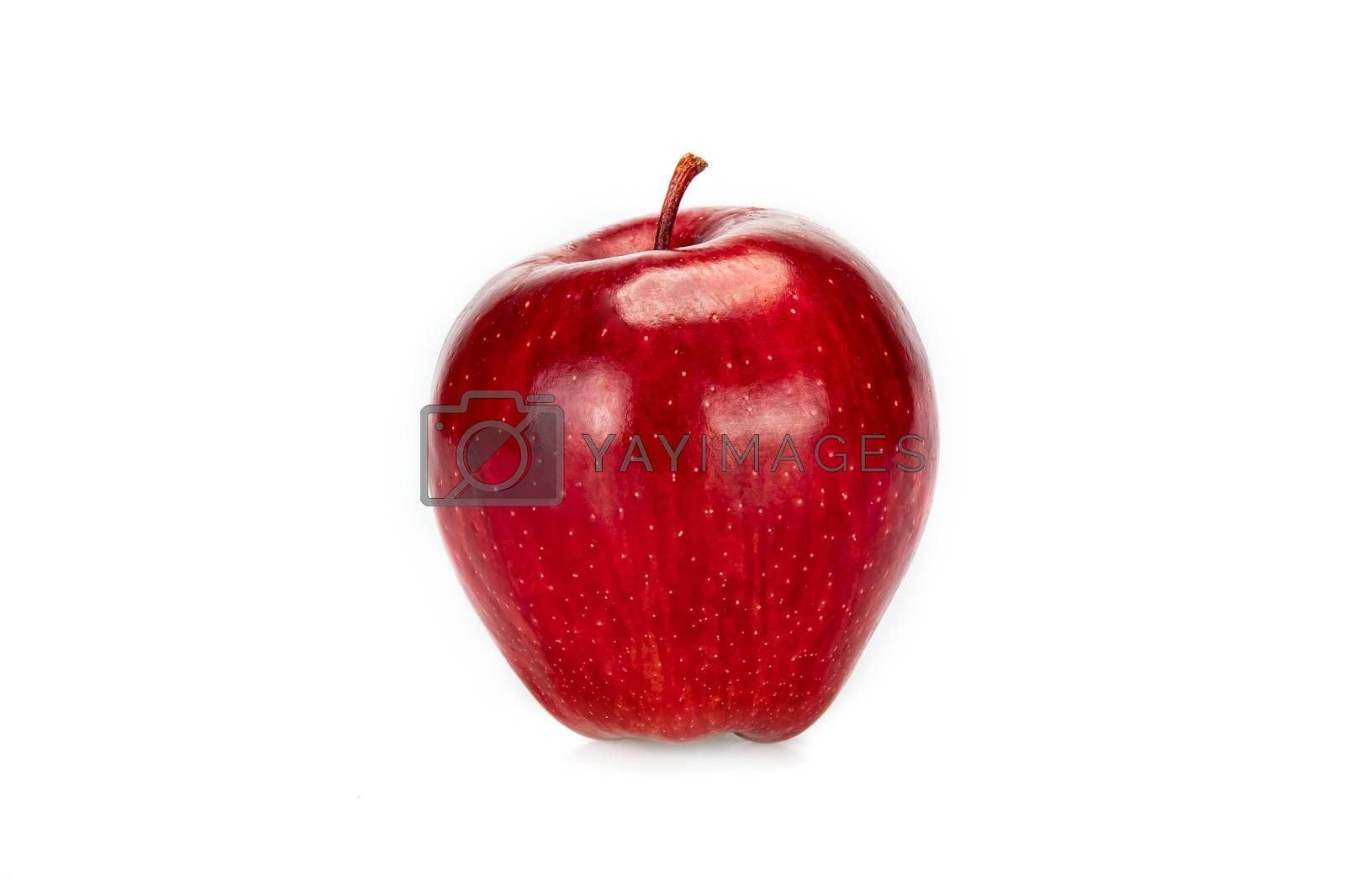 Fresh single red apple, isolated  on white background.