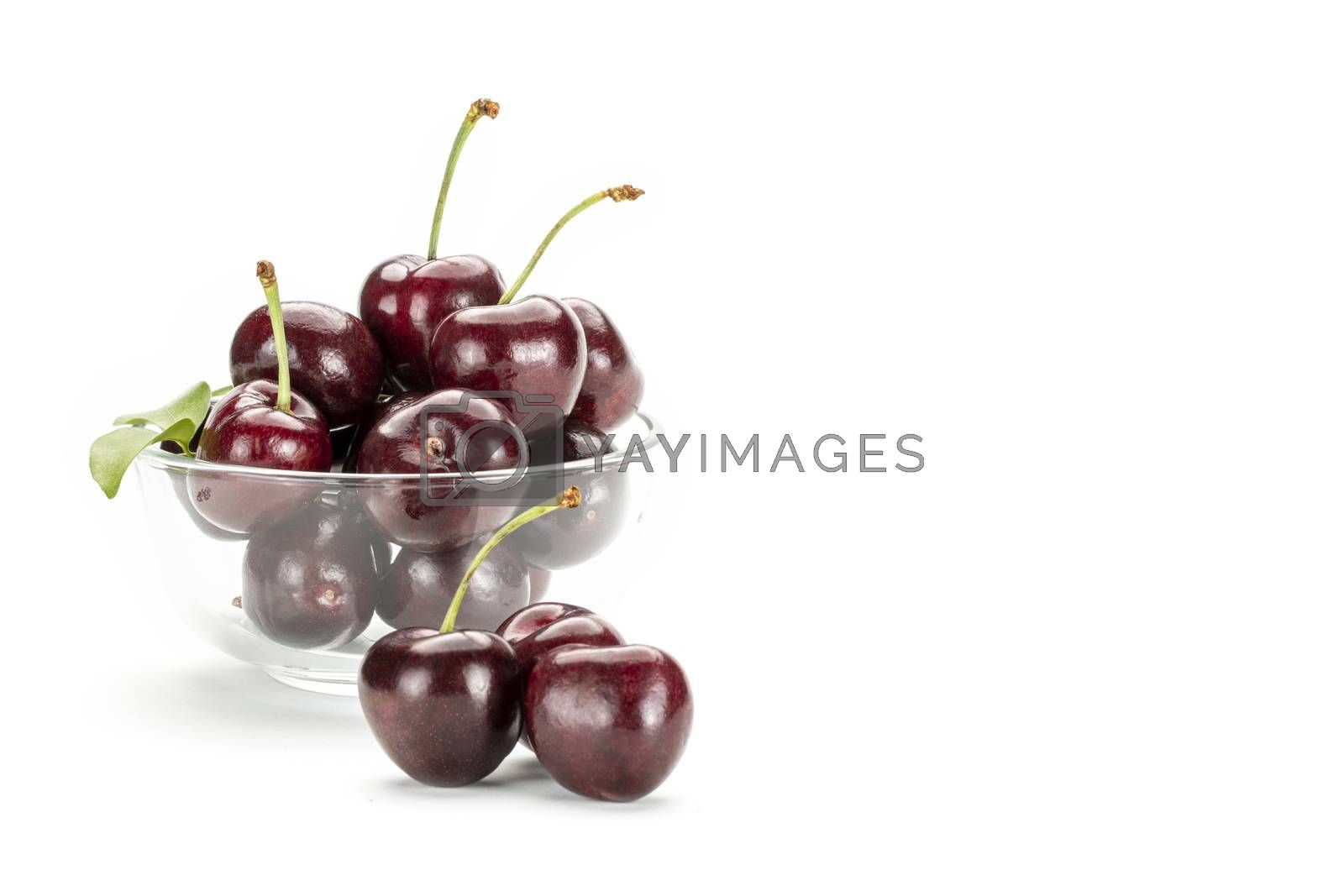 A bunch of ripe red cherries in a clear glass cup. Isolated on white background.