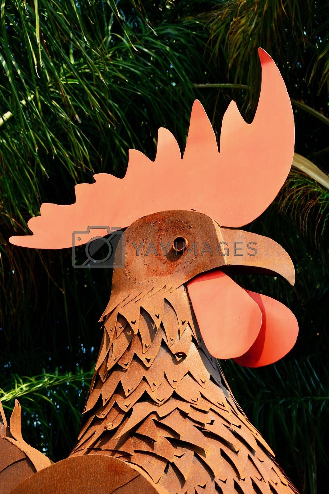 Funny garden sculpture representing a rooster. Rusty metal as its building element.