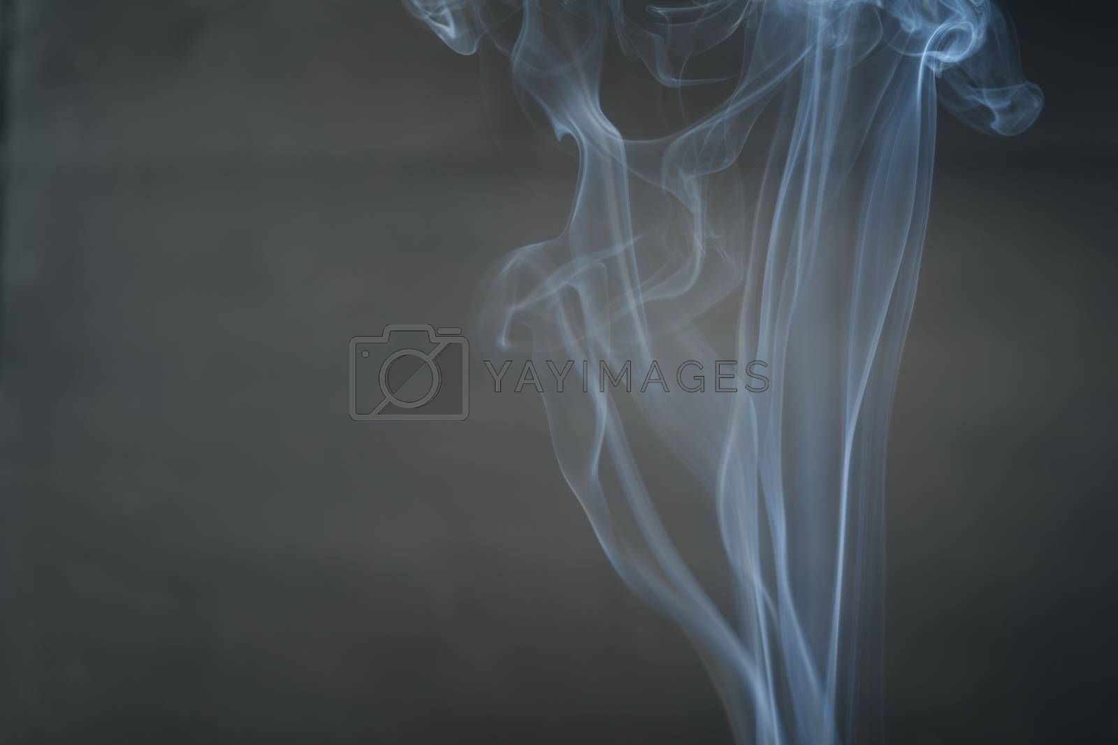 White smoke, curly black background, used as the background image.