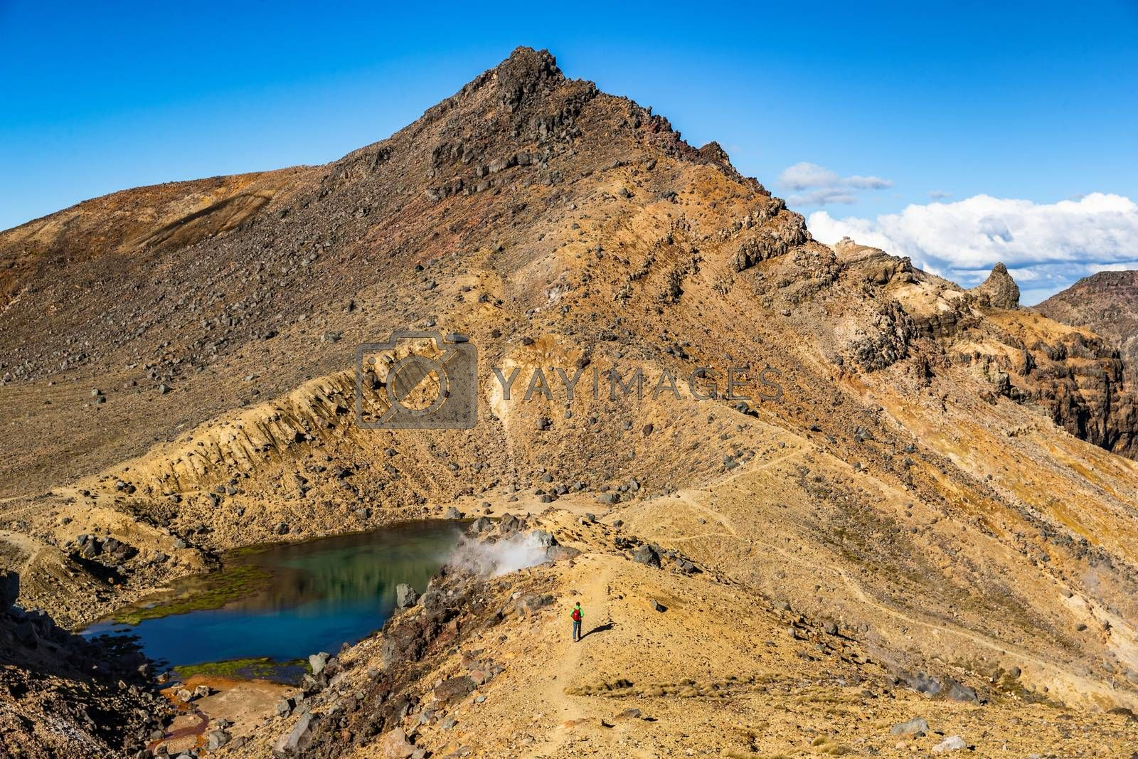 New Zealand Tongariro Alpine Crossing National Park. Tramping tramper hiker man walking on famous destination in NZ. Popular tourist hiking hike hero view of landscape by Maridav