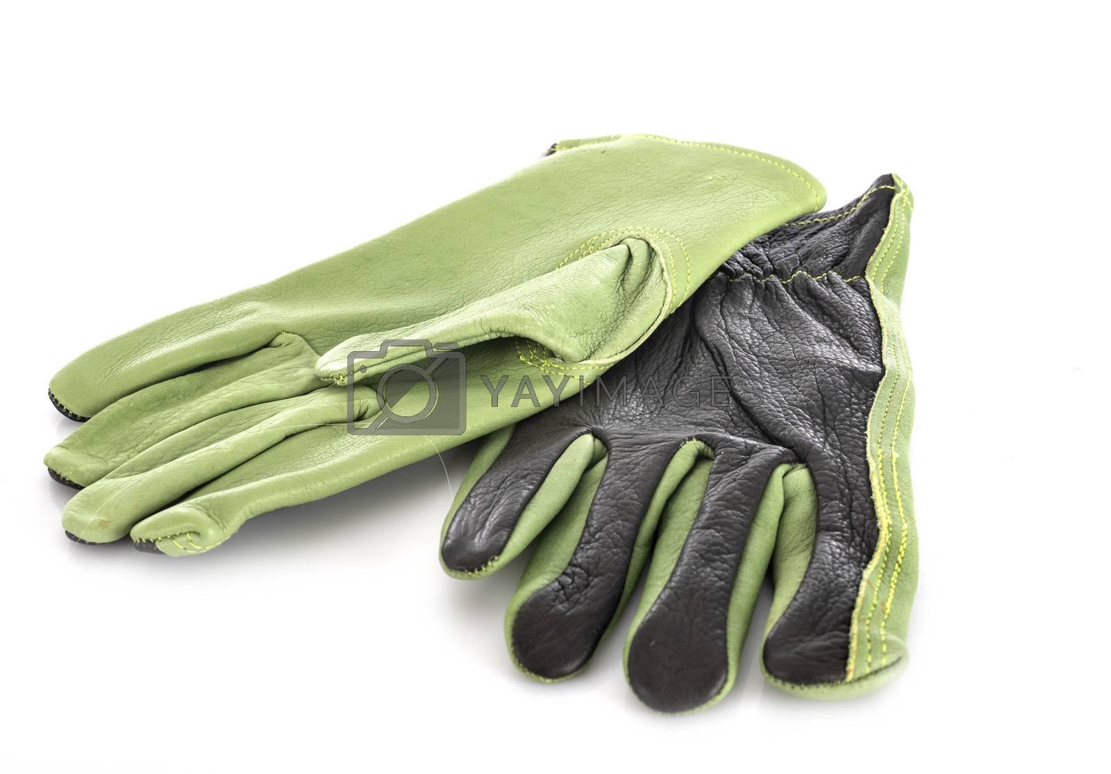 garden gloves in front of white background
