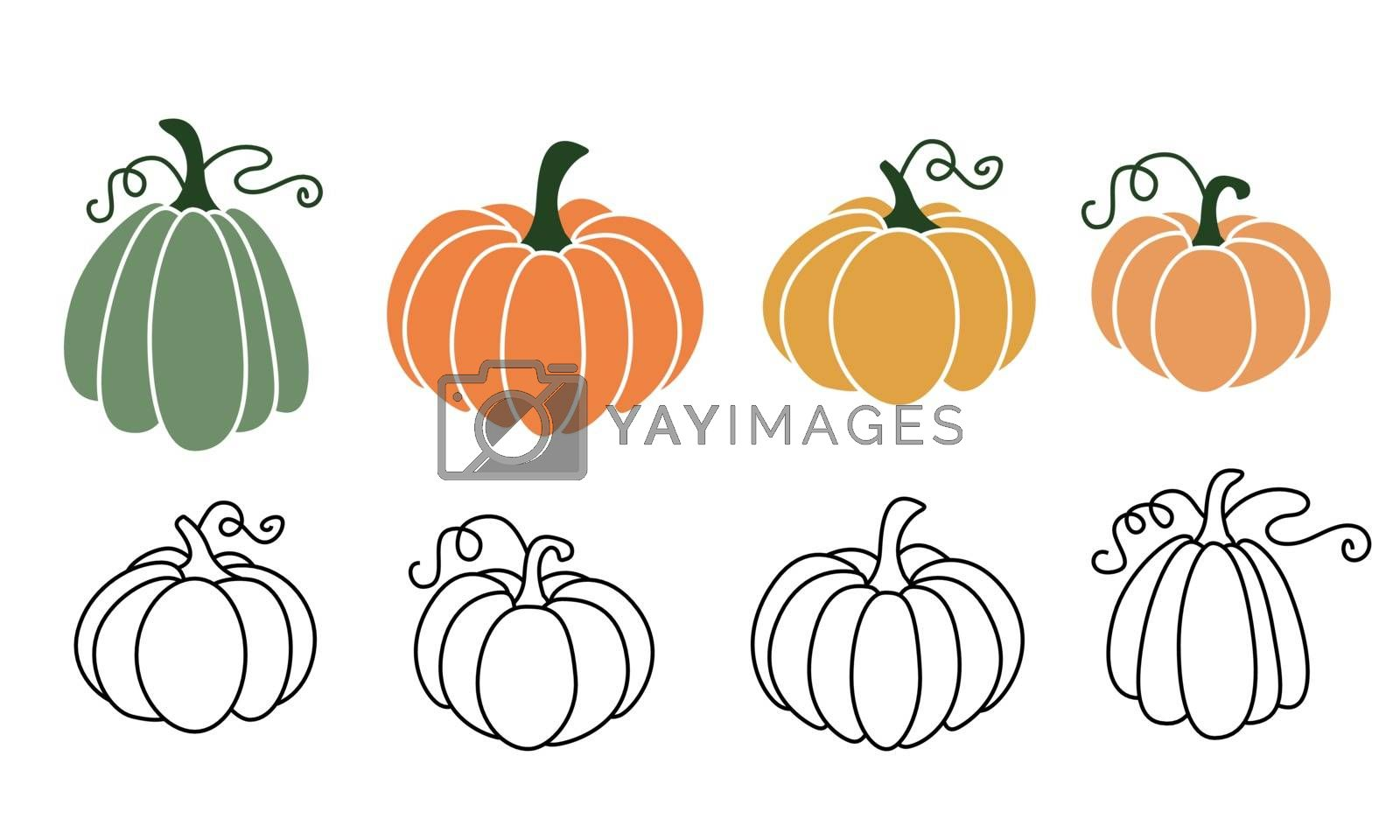 A set of pumpkins in various shapes, black outlined and colored. Vector collection of cute hand drawn pumpkins on white background. Elements for autumn decorative design, halloween invitation, harvest theme and thanksgiving