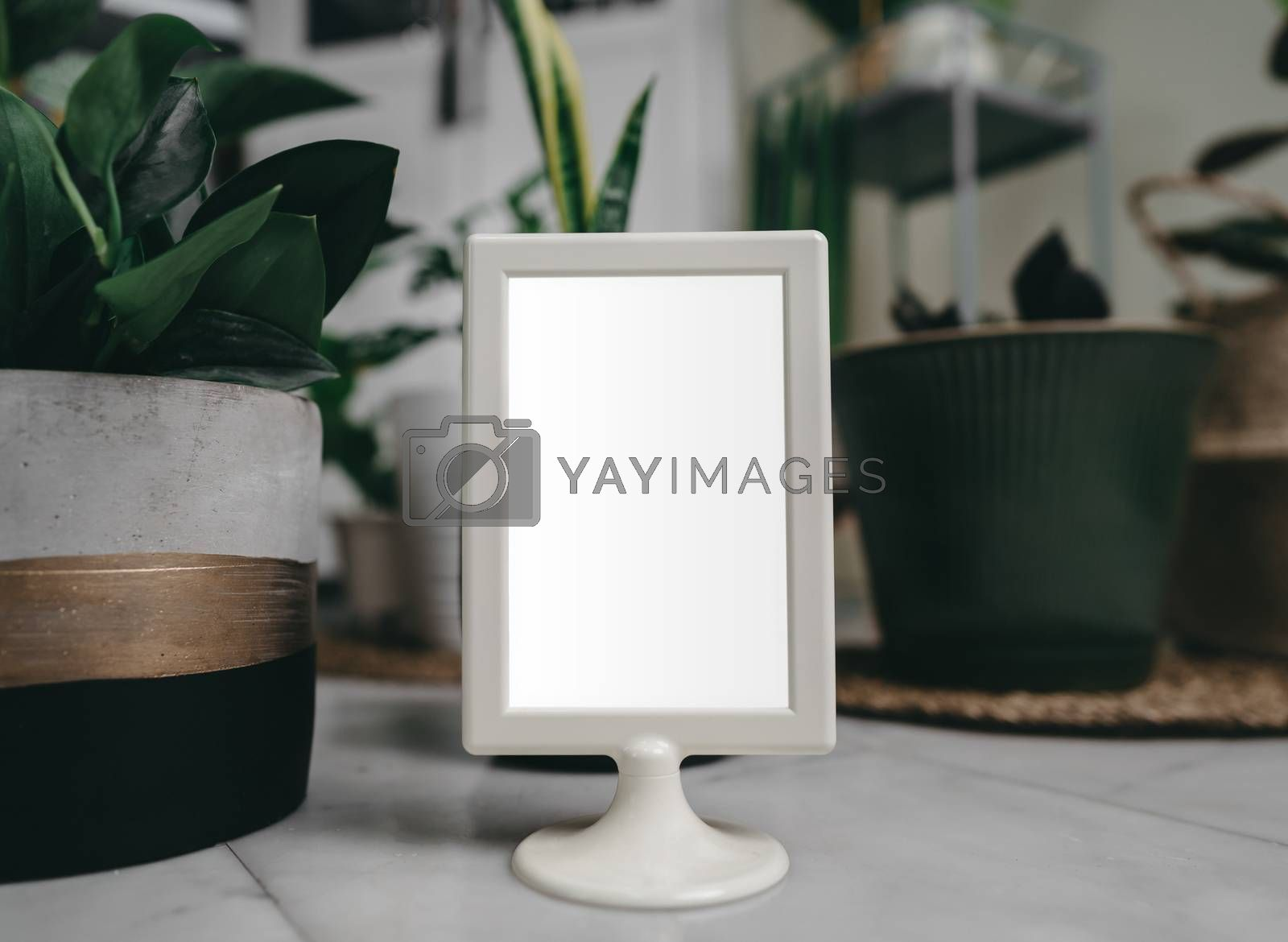 Hipster mockup image on picture frame or portrait frame on table.Showing a frame with blank white screen.Green nature background front view.