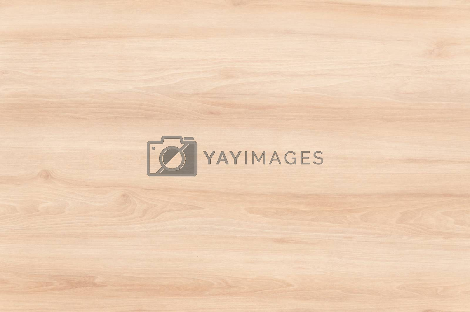 Wood texture background surface with natural pattern