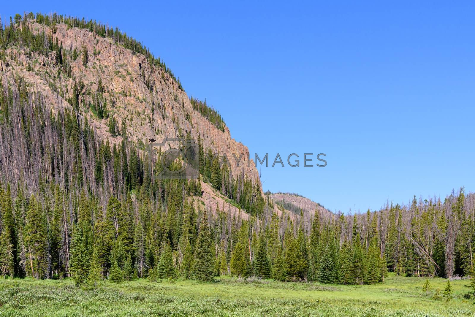 Colorado Scenic Beauty. The Mountains of Northern Colorado by Gary Gray