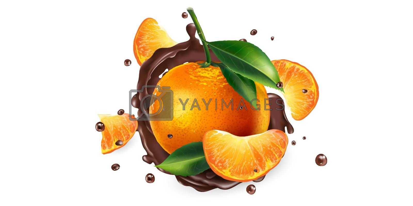 Whole and sliced mandarins in chocolate splashes on a white background. Realistic vector illustration.