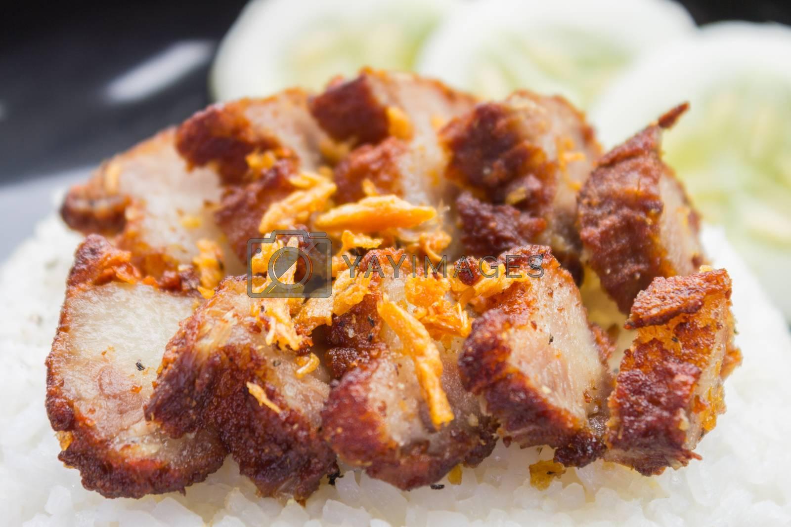 Thai Food Fried Pork with Garlic and Cucumber Zoom. Fried pork with garlic or steak on rice and cucumber zoom view in food and drink category