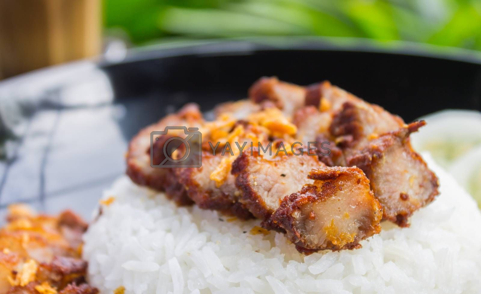 Thai Food Fried Pork with Garlic and Cucumber and Latte Coffee on Green Tree Background. Thai Food Fried Pork Steak with Garlic and Latte Coffee in food and drink category