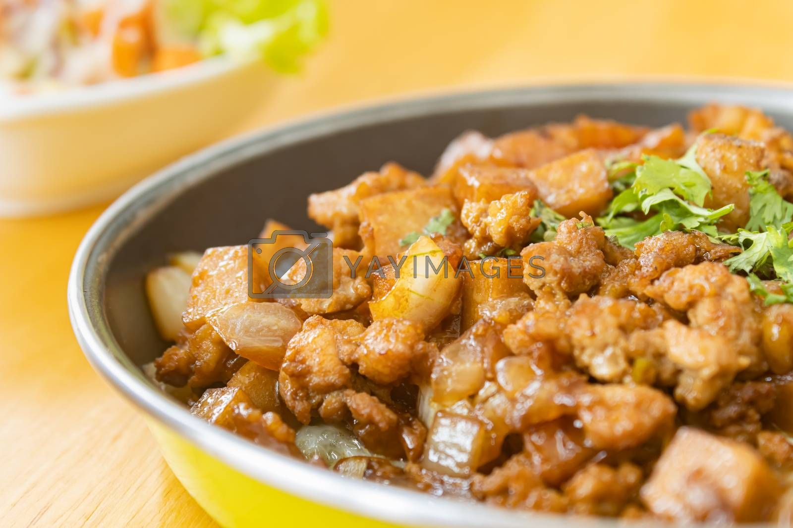 Stir Fried Pork with Onion and Garlic and Black Soy Sauce and Coriander Topping and Tofu with Natural Light on Right Frame