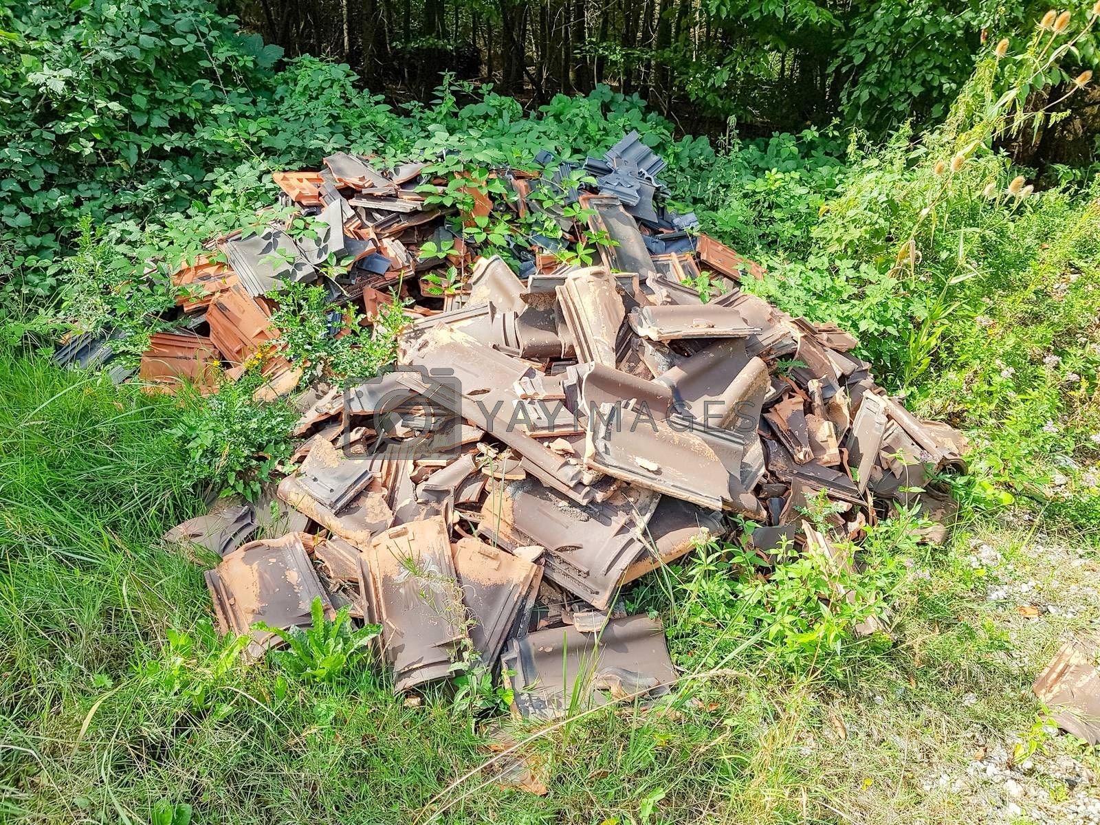 Illegal and illegal disposal of roof tiles in a forest