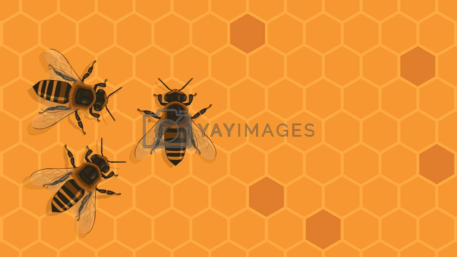 Detailed flat vector illustration of bees on top of a honeycomb background. World Bee Day.
