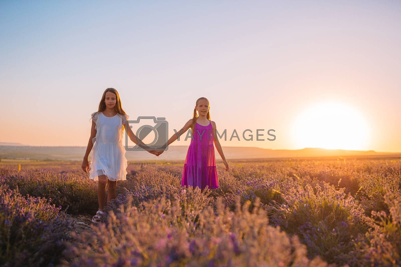 Little adorable girls in lavender flowers field