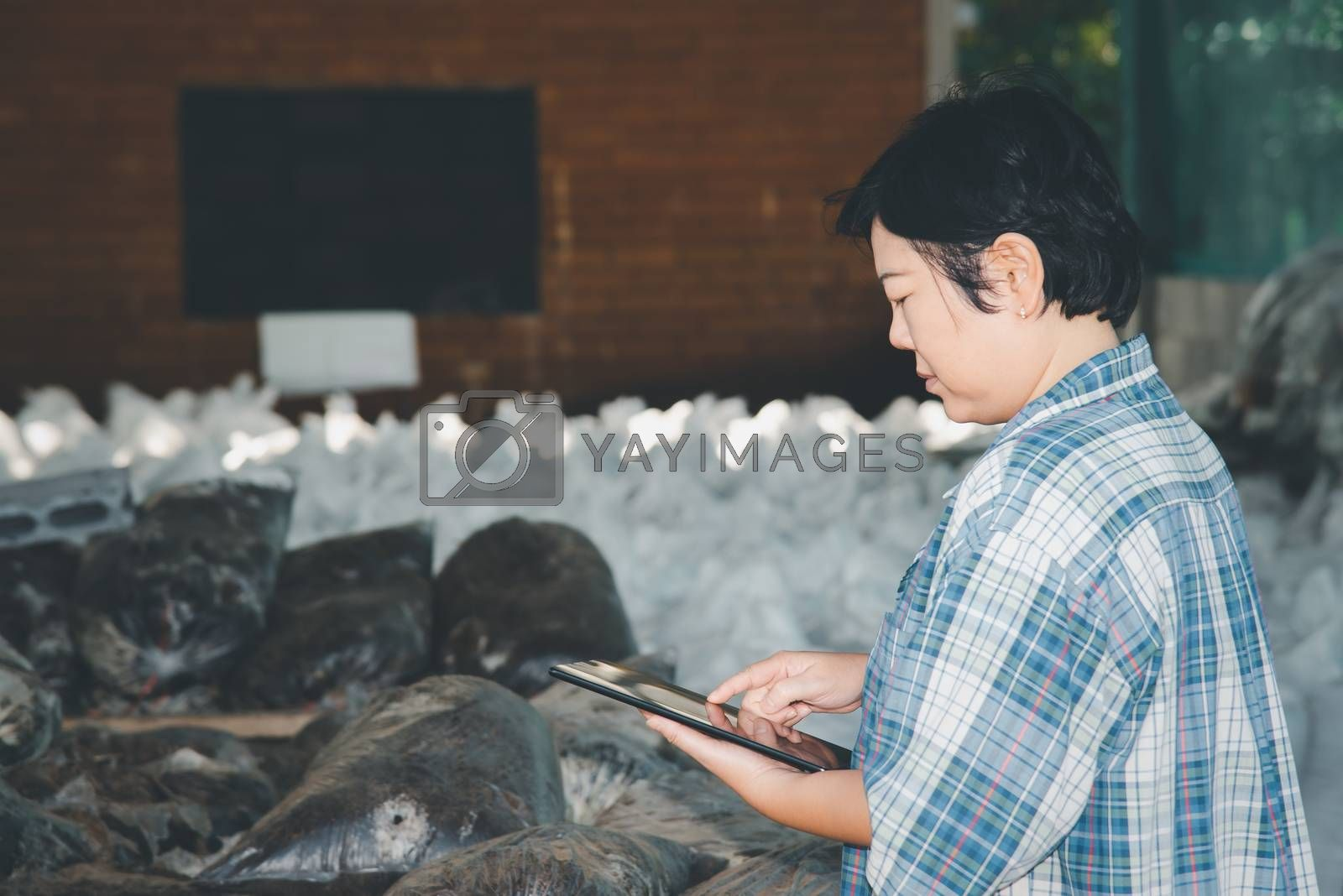 Asian woman smart farmer agriculturist working at Fertilizer composting plant with Organic Fertilizer, Compost (Aerobic Microorganisms) from animal waste for use in the organic agriculture industry
