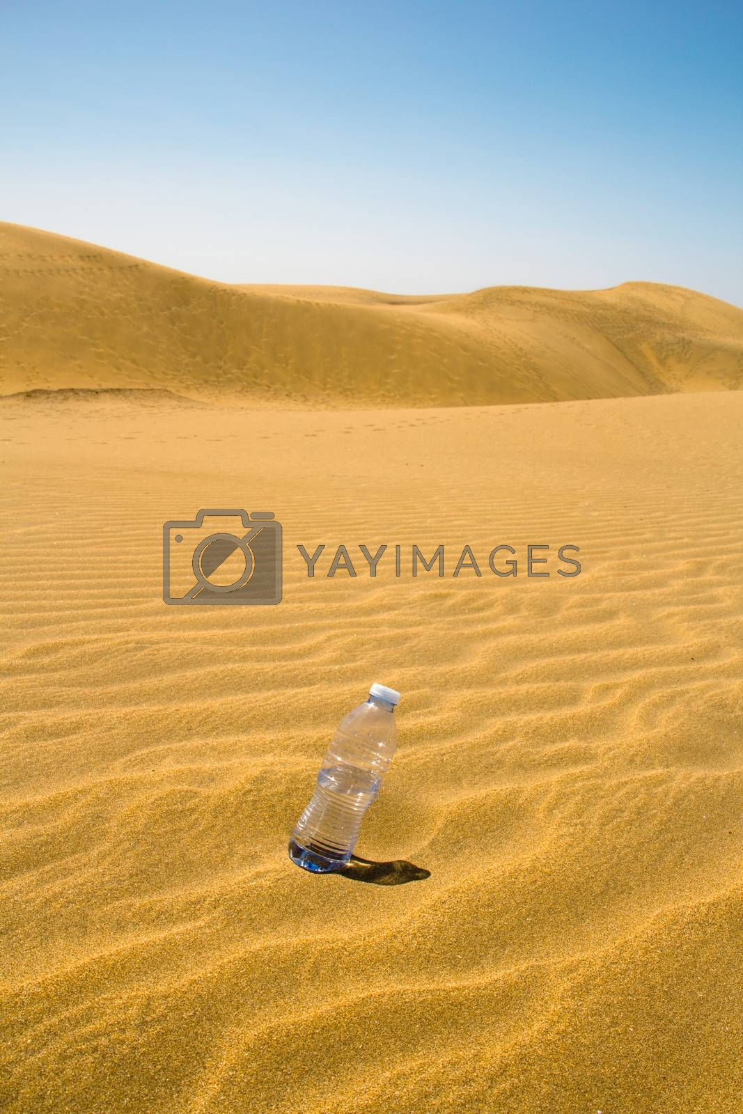 plastic bottle of water in the sand of the desert with blue sky