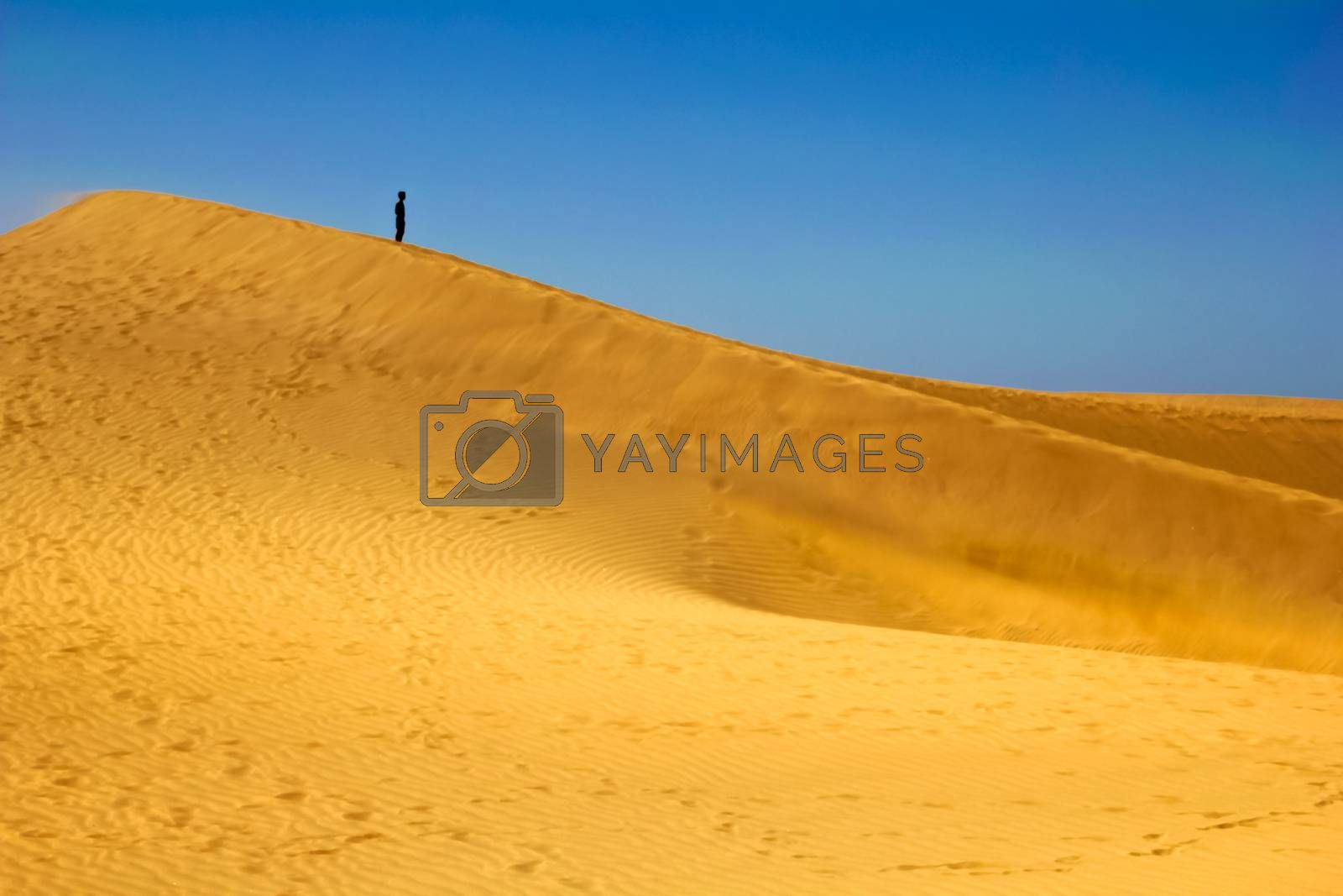 man standng on the sand of the desert with blue sky