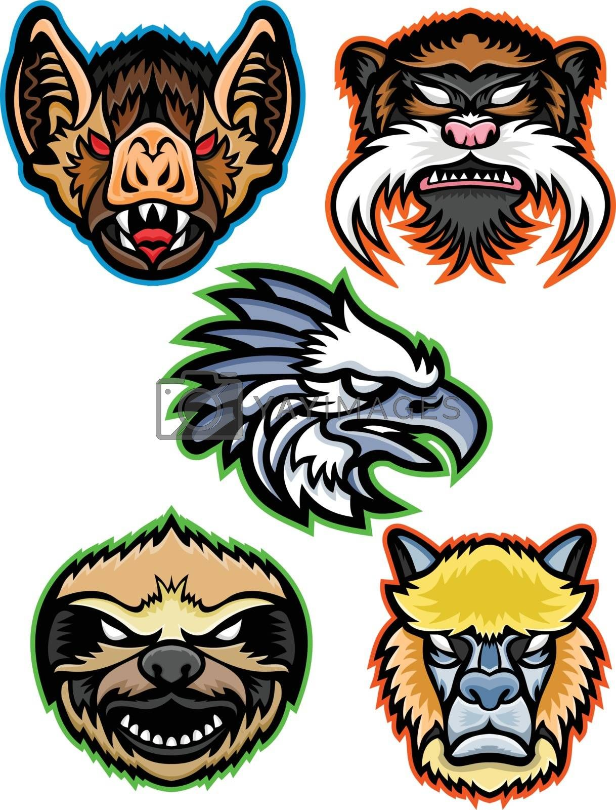 Mascot icon illustration set of heads of Amazon wildlife like the vampire bat, emperor tamarin monkey, harpy eagle, sloth and alpaca or llama viewed from  on isolated background in retro style.