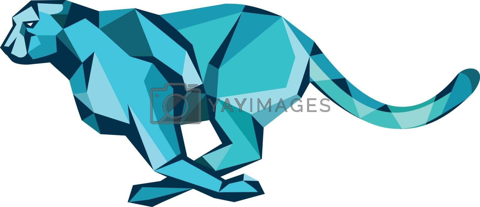 Low polygon style illustration of cheetah running for its prey viewed from side on isolated background.