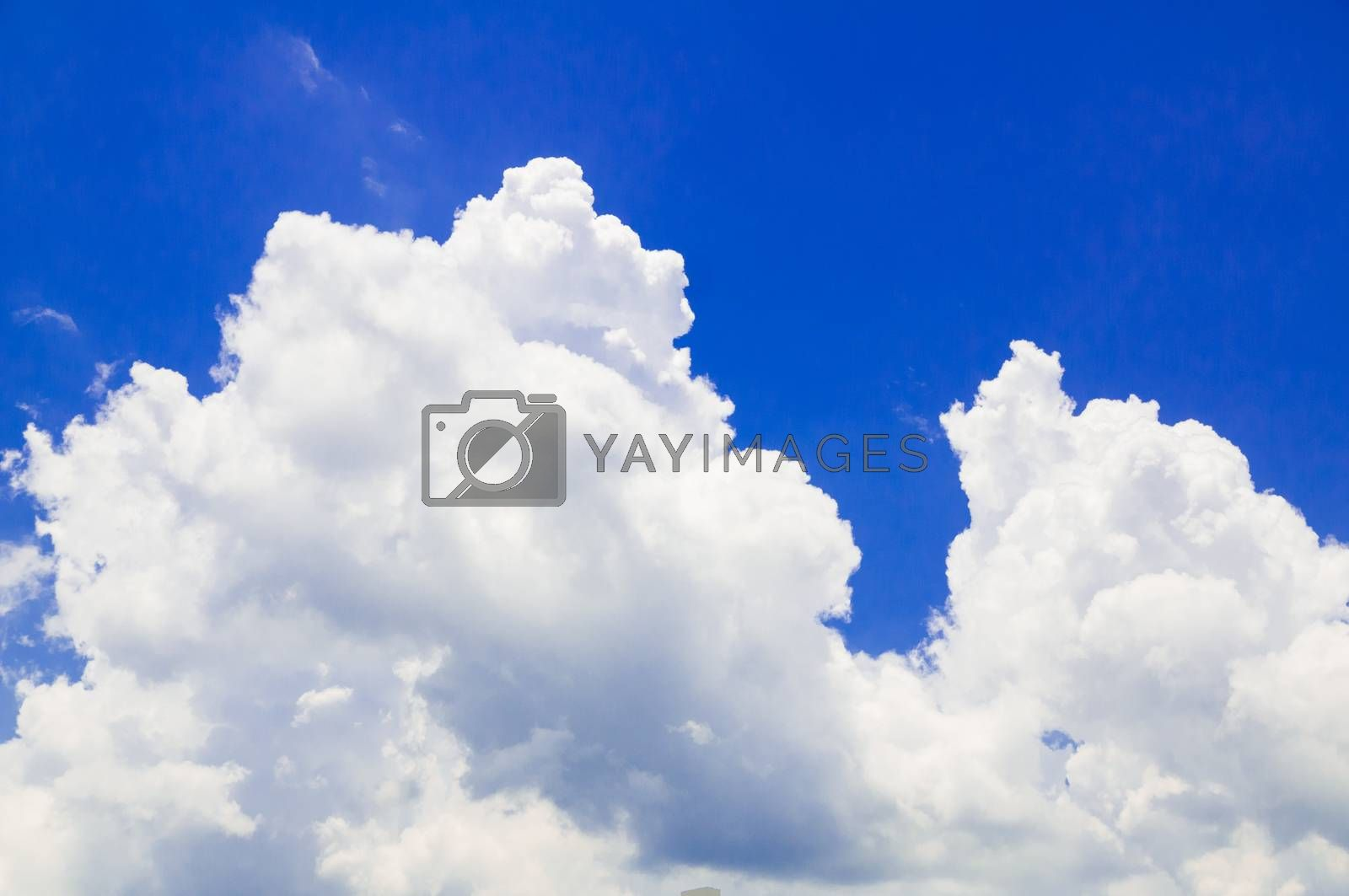 Nature Blue Sky and White cloud Background, Cumulus Cloud