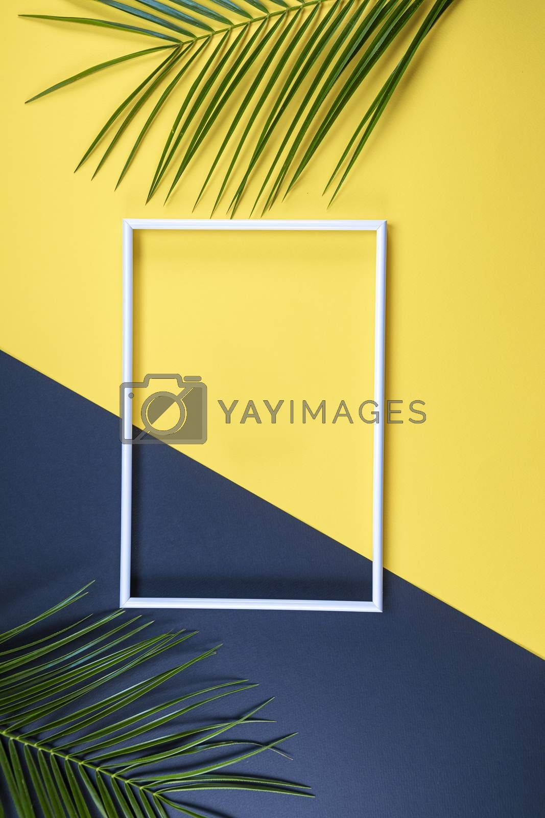 Summer composition with photo frame and green leaves on yellow and black background. Creative mockup with copy space and tropical leaves.