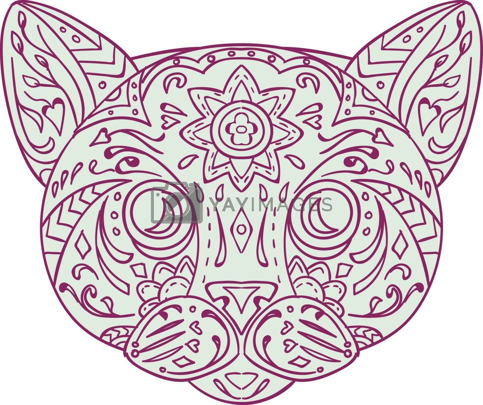 Mandala style illustration of a cat head  viewed from front set on isolated white background.