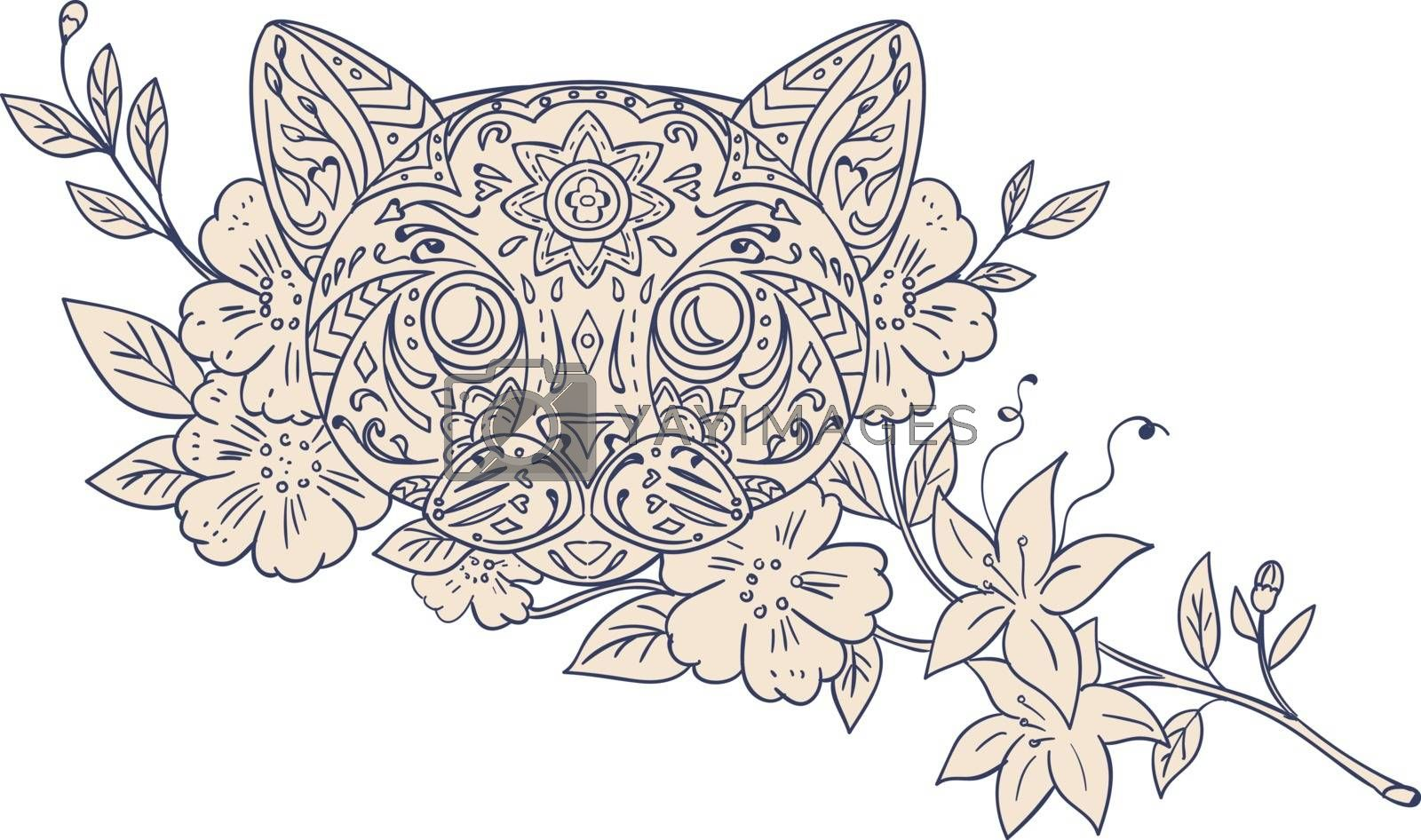Mandala style illustration of a cat head with jasmine flowers viewed from front set on isolated white background.