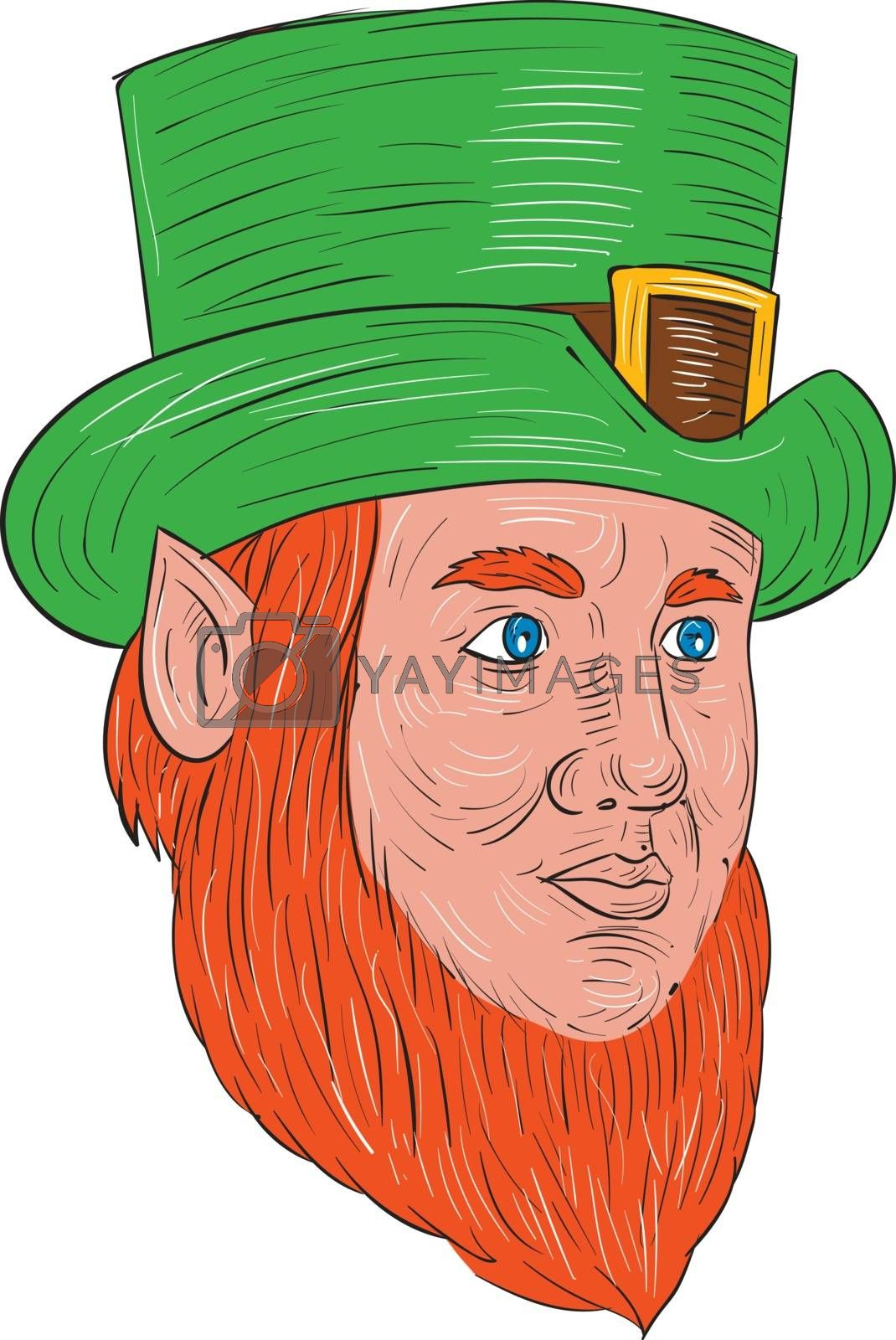 Drawing sketch style illustration of a leprechaun head looking to the side in a three quarter view set on isolated white background.