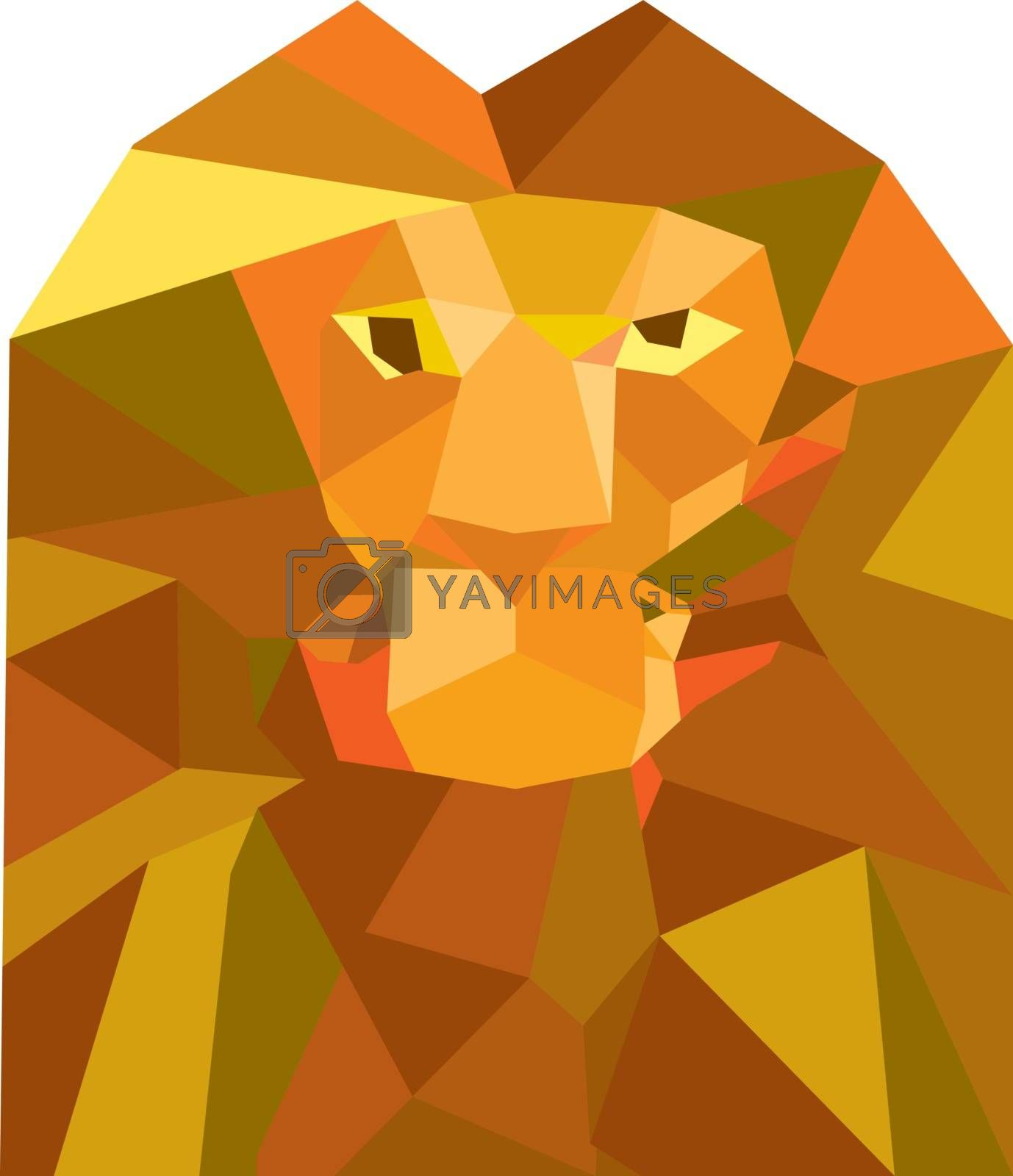 Low polygon style illustration of a lion big cat head viewed from front set on isolated white background.