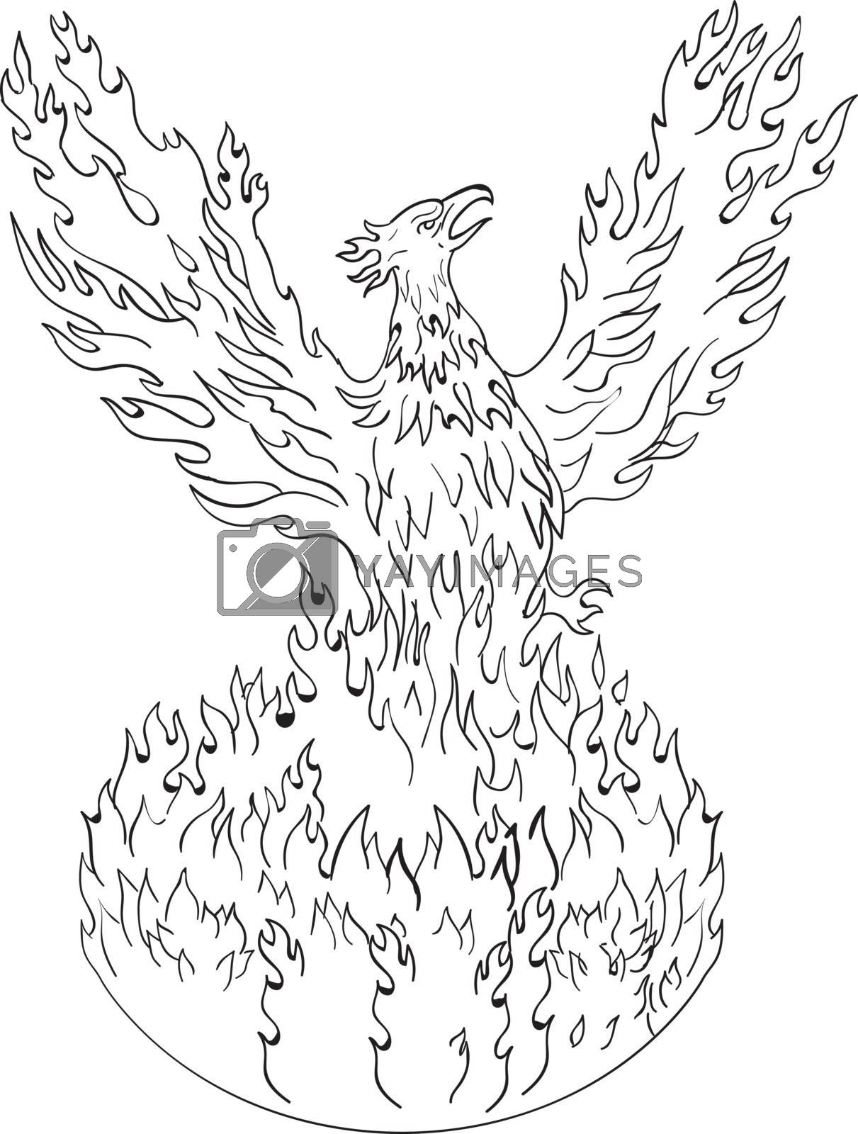 Drawing sketch style illustration of a phoenix rising up from fiery flames, wings raised for flight done in black and white set on isolated white background.