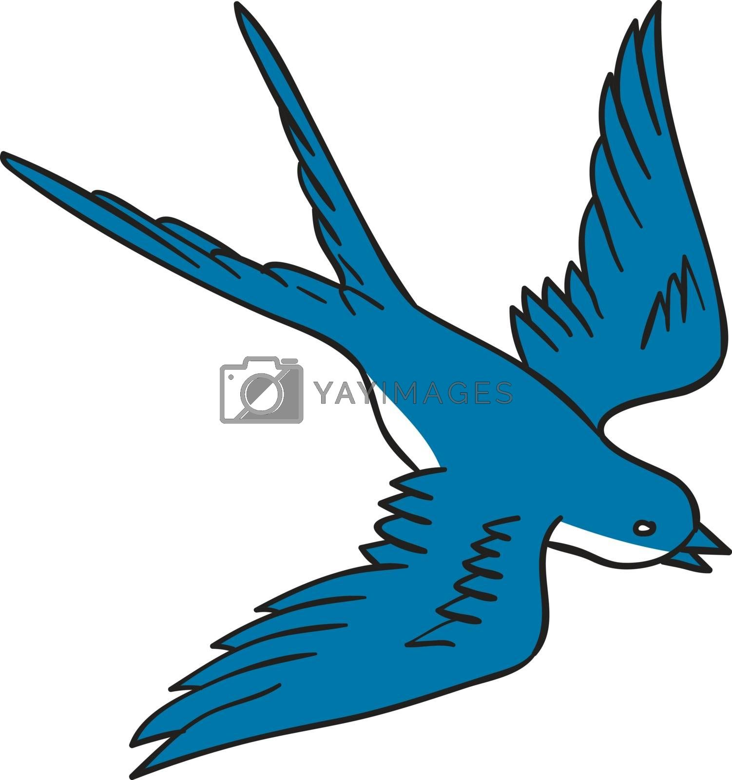 Drawing sketch style illustration of a swallow, a fast flying passerine bird in the family Hirundinidae, flying down viewed from the side set on isolated white background.