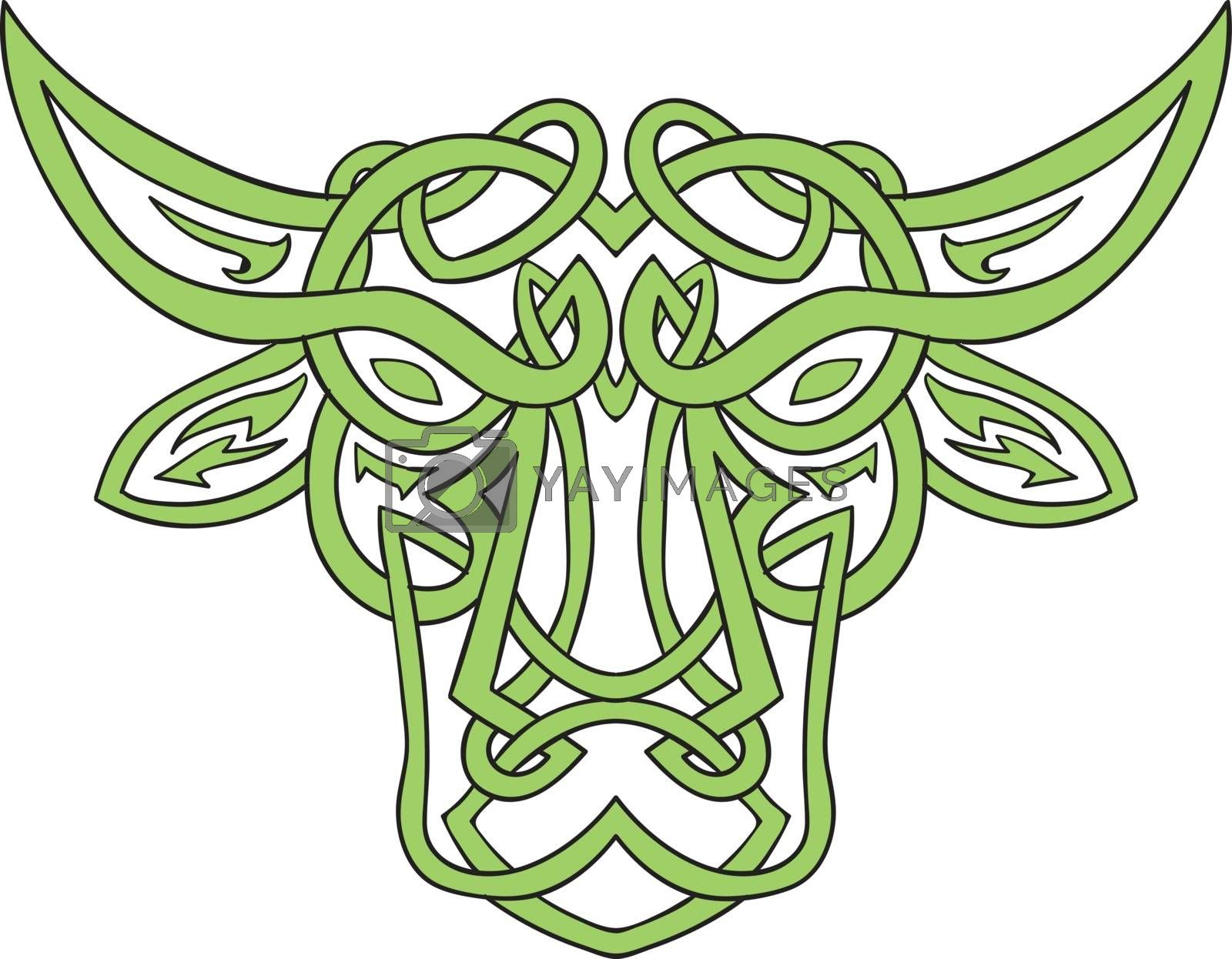 Illustration of stylized taurus the bull made in Celtic knot, called Icovellavna,  plait work or knotwork woven into unbroken cord design set on isolated white background.