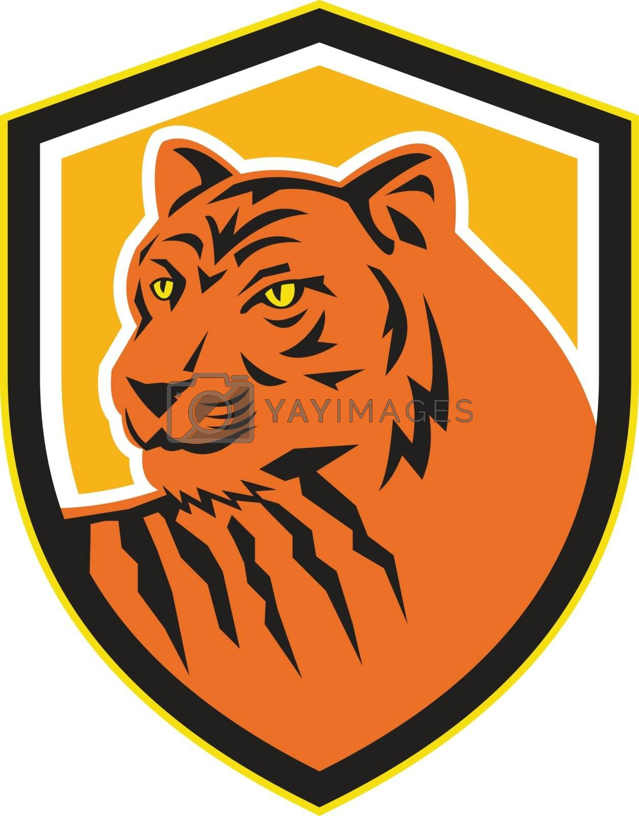 Illustration of a tiger head viewed from front set inside shield crest on isolated ackground done in retro style.