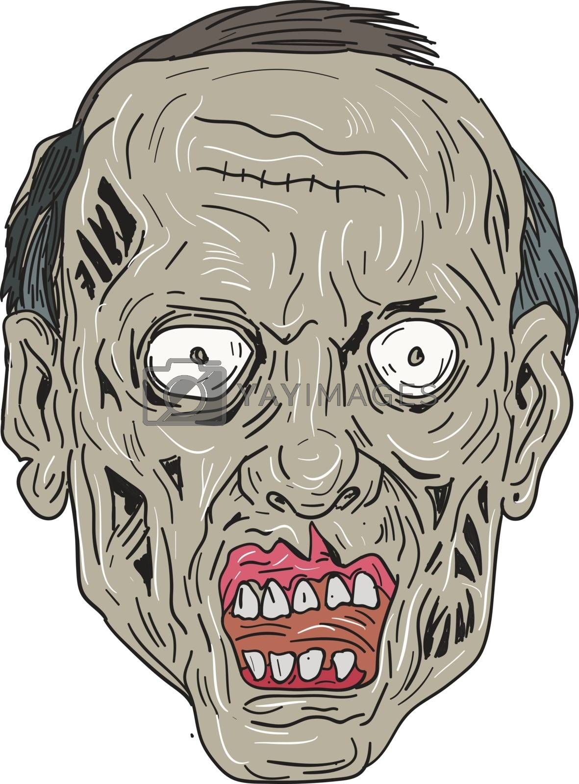 Drawing sketch style illustration of a zombie skull head viewed from front set on isolated white background.