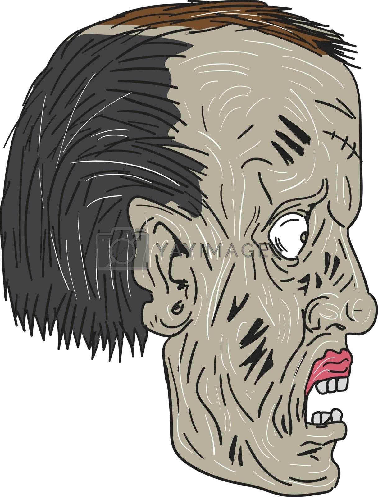 Drawing sketch style illustration of a zombie skull head viewed from the side set on isolated white background.
