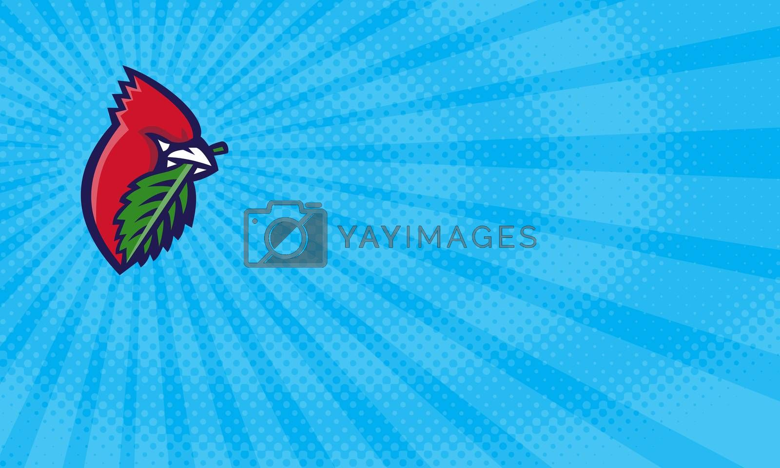 Business card showing Illustration of a head of a Cardinal, passerine birds also known as cardinal-grosbeak and cardinal-bunting with leaf viewed from the side set inside circle done in retro style.