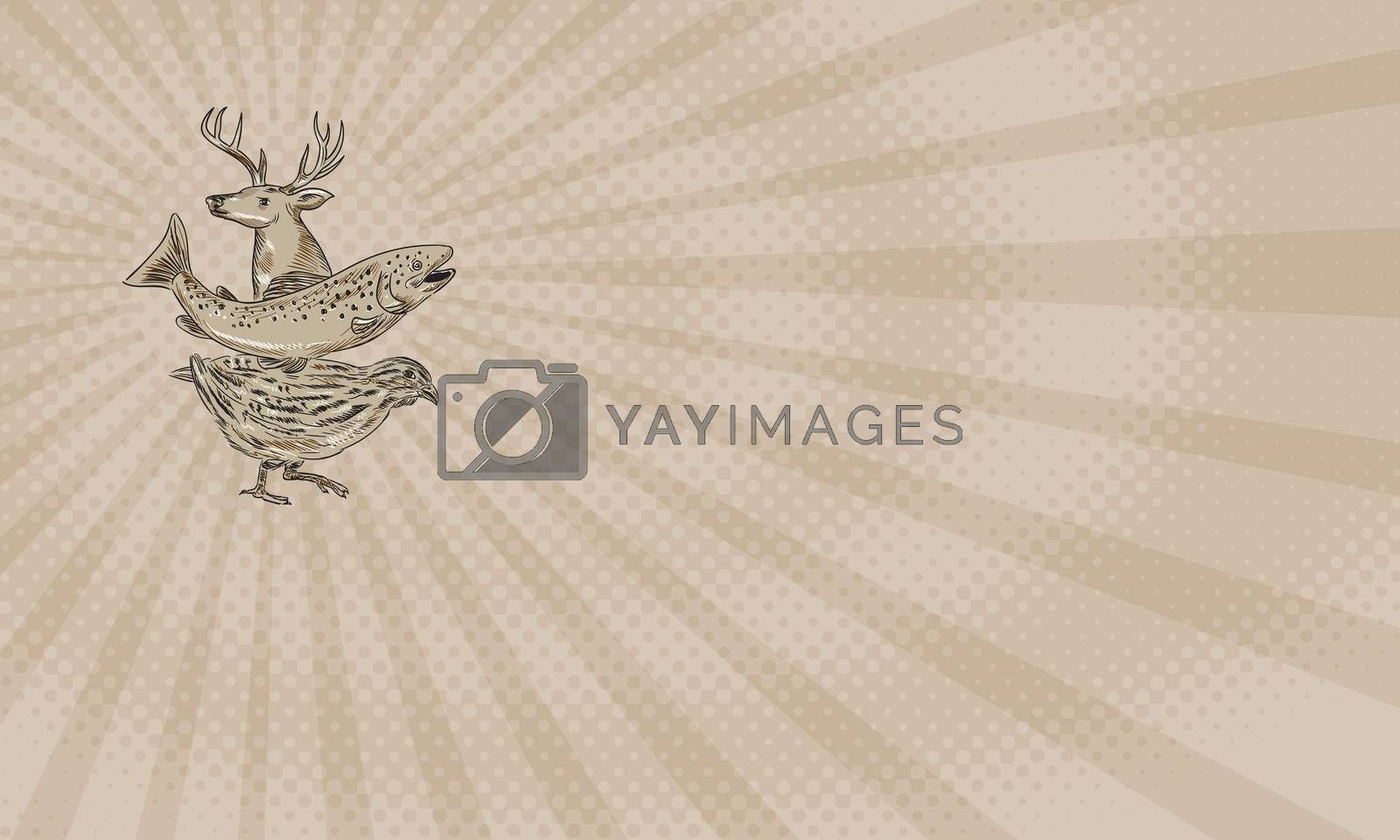 Business card showing Drawing sketch style illustration of a deer, trout and quail viewed from the side.