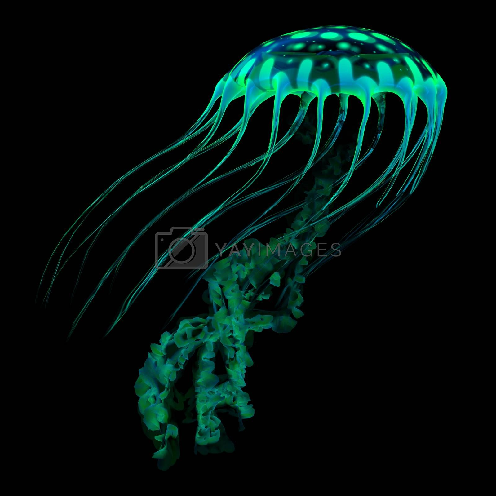 A glowing spotted jellyfish flows through the dark ocean with bioluminescent colors searching for prey.