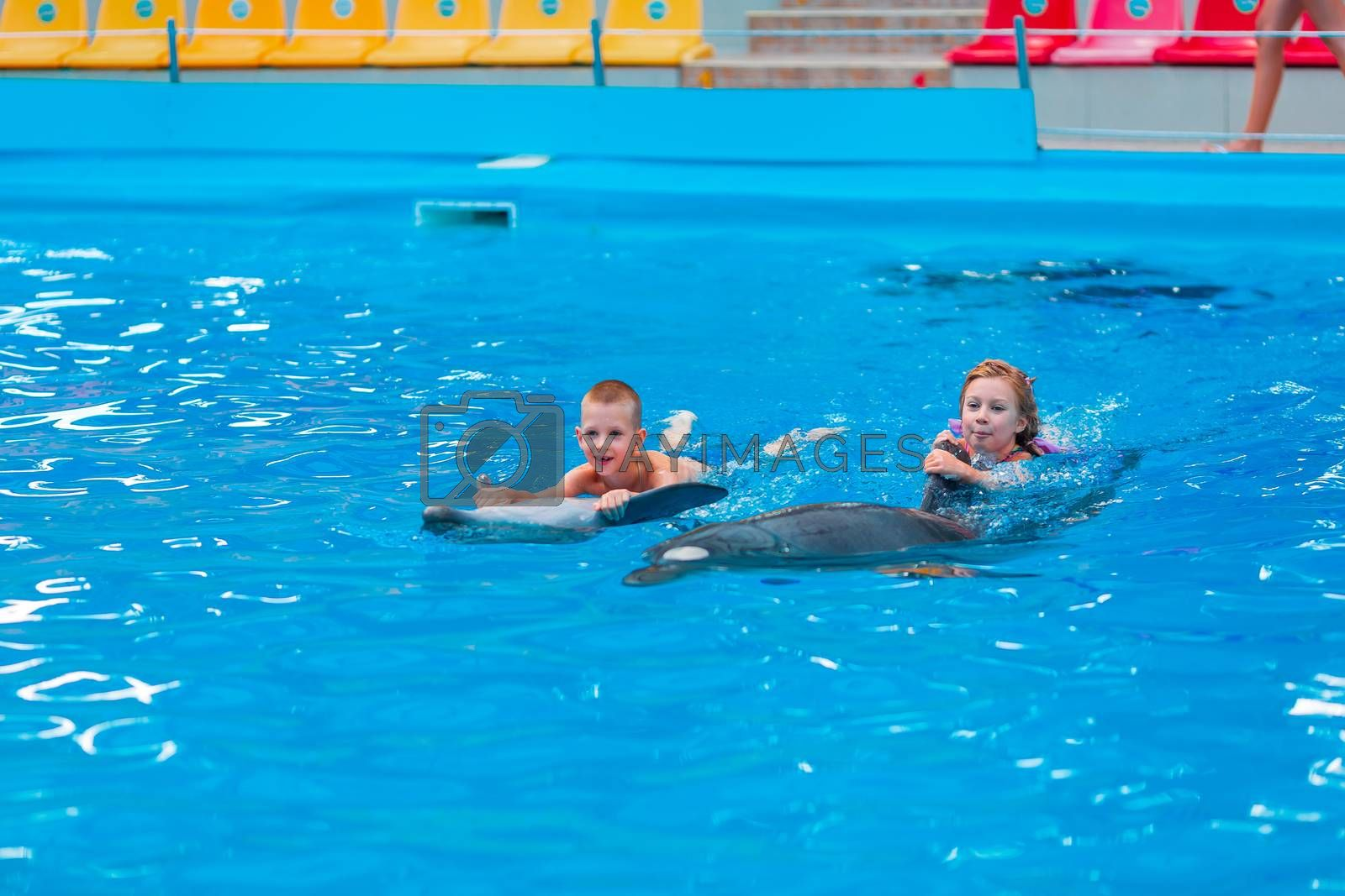 Happy little kids swimming with dolphins in Dolphinarium. Swimming, bathing and communication with dolphins.