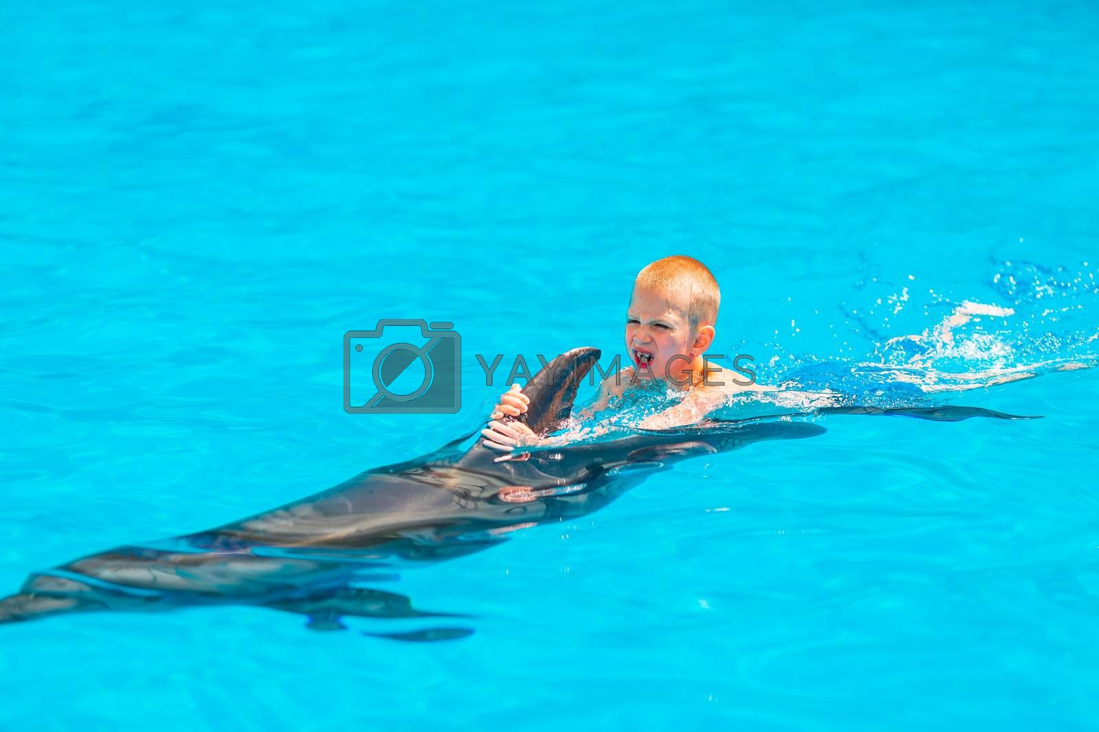 Happy little boy swimming with dolphins in Dolphinarium. Swimming, bathing and communication with dolphins.