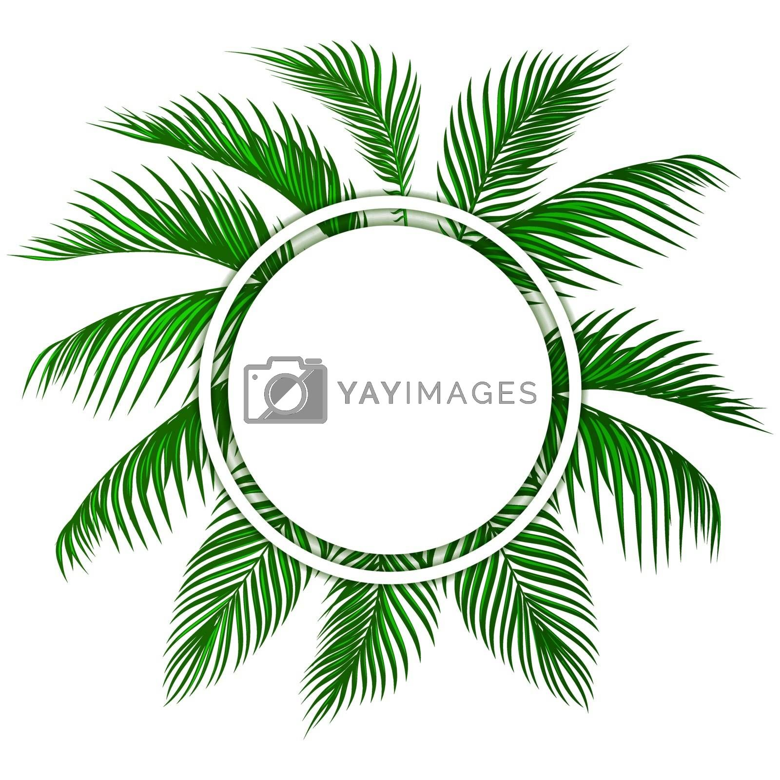 Green tropical palm leaves. Place for advertising, announcements. illustration by lilystudio