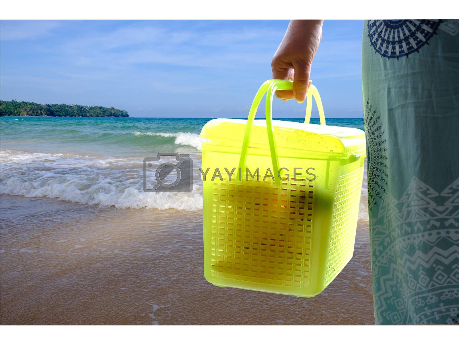 Woman hand holding plastic box green container with fruits for transportation and seaside background.