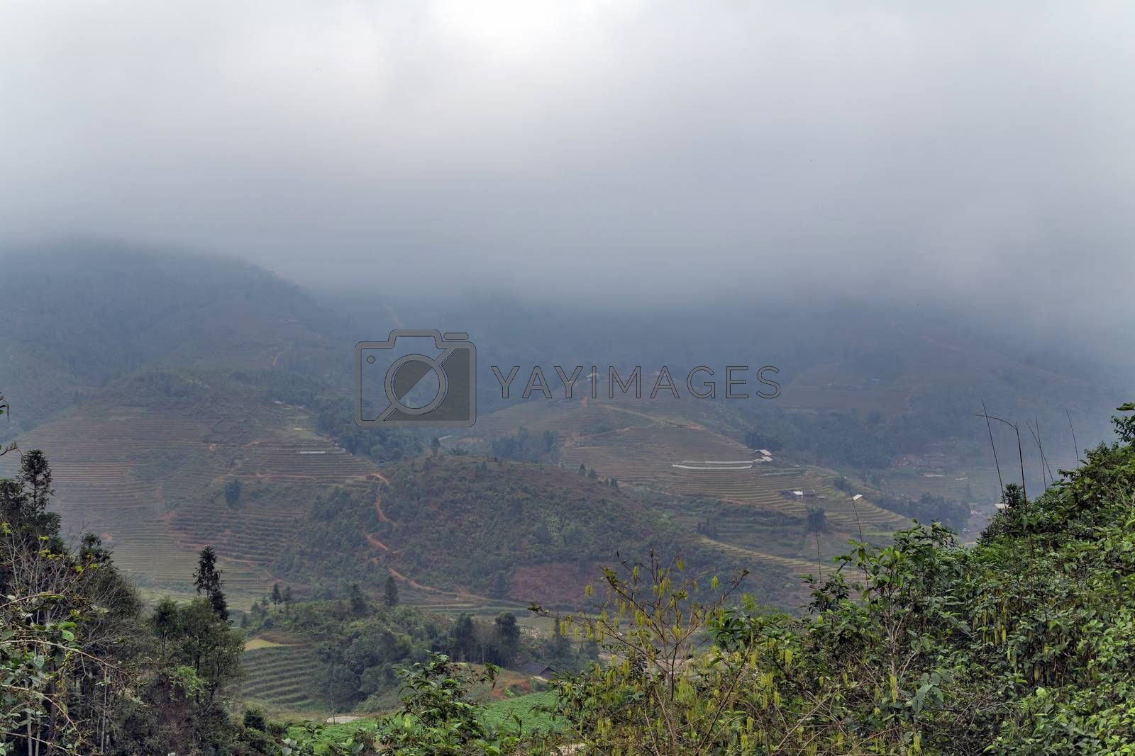 Landscape Terraced rice field view of Sapa Valley in Lao Cai Province in Vietnam