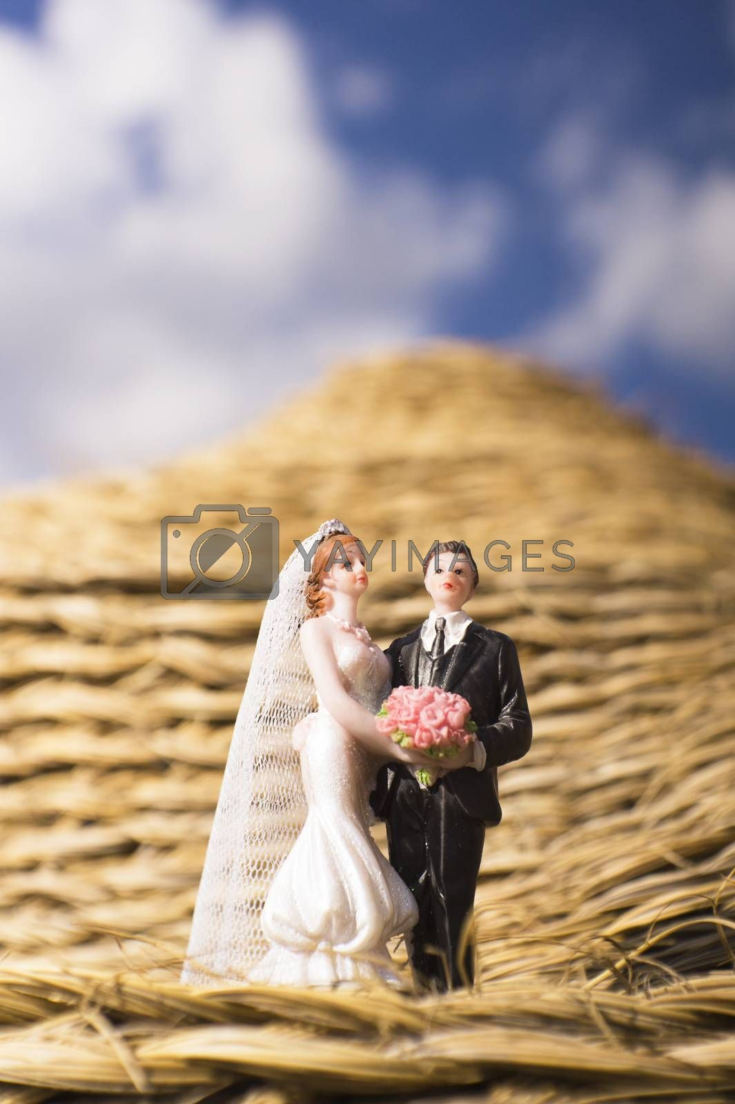 Standard figure of wedding couple on straw in a farm. No people