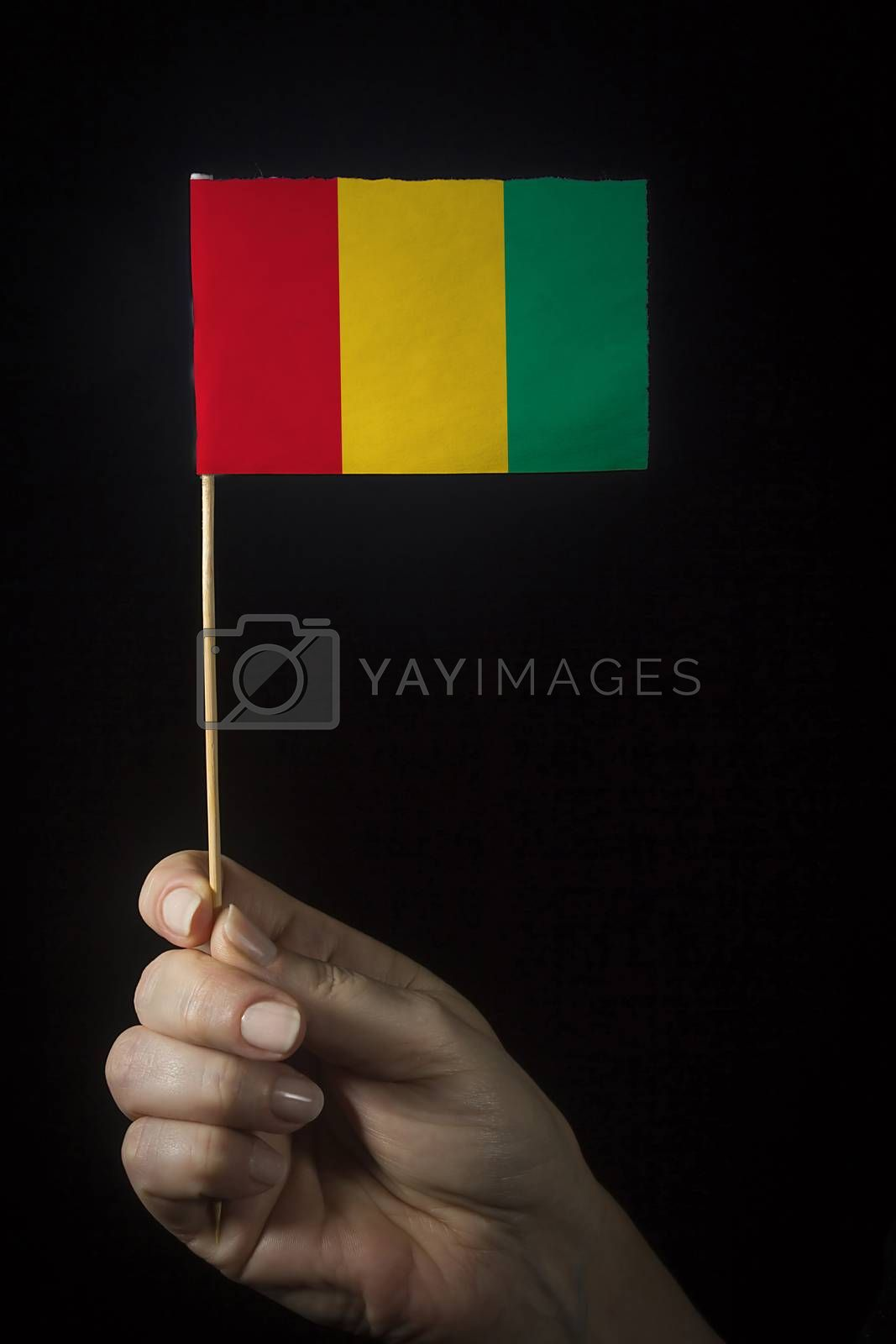Hand with small flag of state of