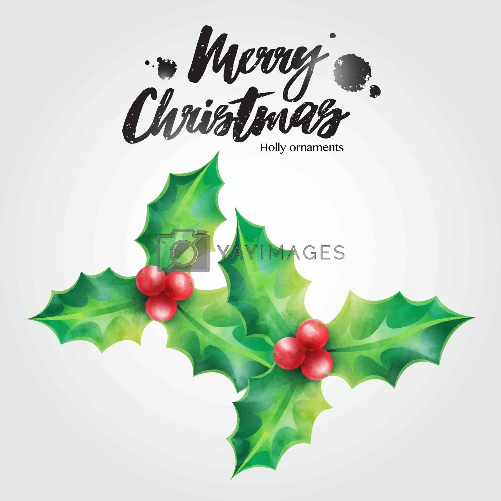 Merry Christmas greeting card, holly vector illustration Christmas ornaments on white background