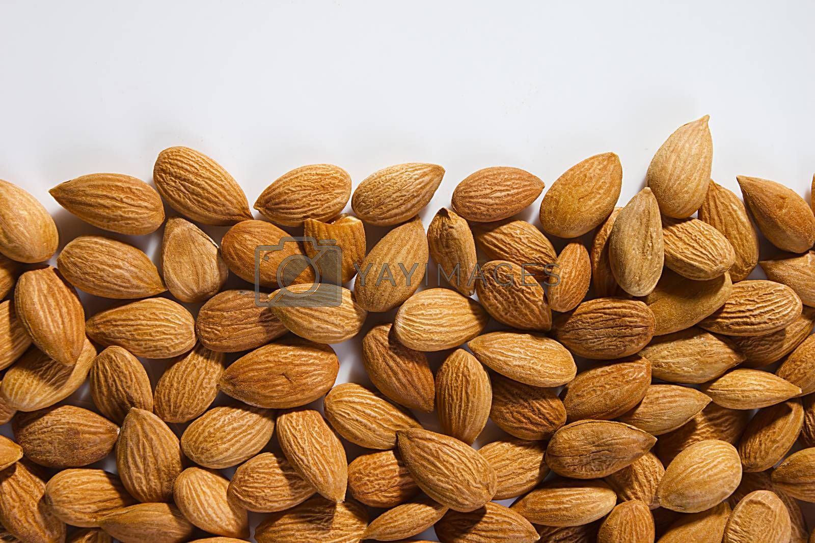 Lots of almond nuts on white background